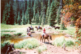 SilverCreek Hunting, Elk hunting and camping while riding horse back